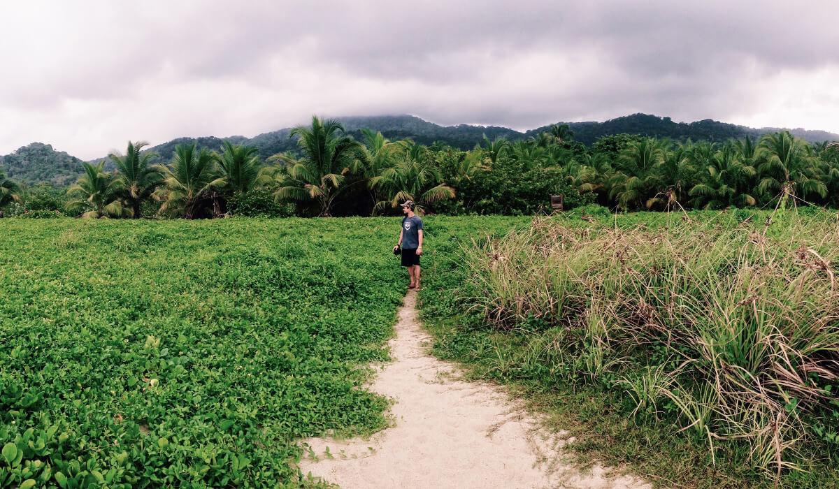 Where the jungle meets the sea, Arrecifes, Tayrona National Park