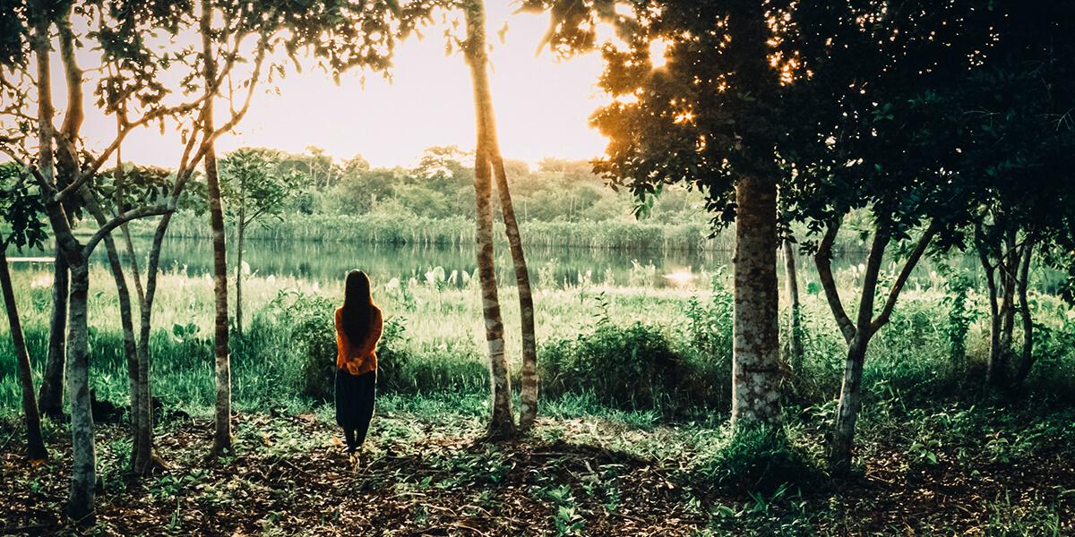 Dinamarca, Ucayali, Peruvian Amazon, 2013